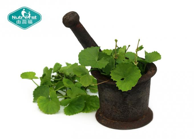 Cosmetic Grade Centella Asiatica ( Gotu Kola ) High Purity Extract For Skin Care