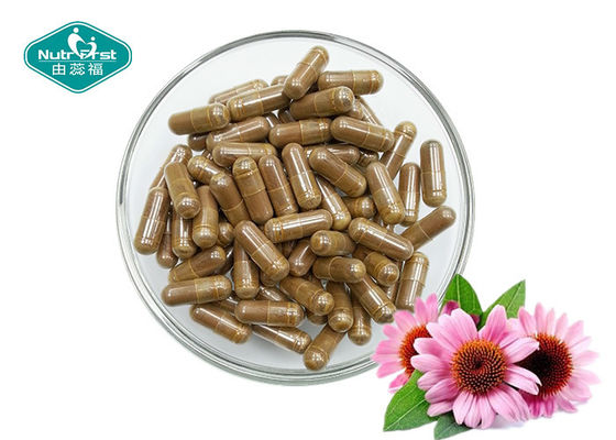 Echinacea Purpurea Herbal Supplements Fight Colds And Upper Respiratory Tract Infections