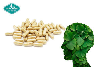 Wellness Natural Herbal Dietary Supplement / Film Coating Ginkgo Biloba Capsule