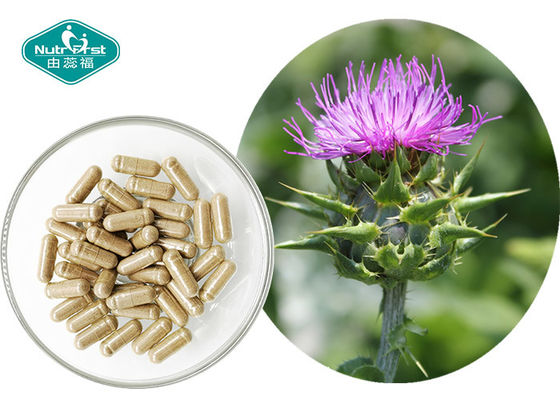China Pure Milk Thistle Extract Excellent Supports Liver Detoxification Reactions supplier