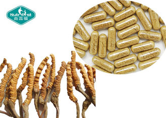 Immune Support Cordyceps Sinensis Extract 300mg Herbal Health Supplements