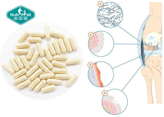 Glucosamine Chondroitin Vitamin C Sustained Release Pellets Capsules For Joint Health