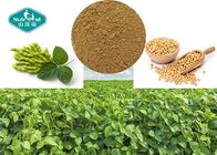 Soybean Natural Botanical Extracts / Organic Herbal Extracts For Women Health
