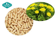 Green Herbal Supplements Dandelion Root Extract Supports Liver And Gallbladder