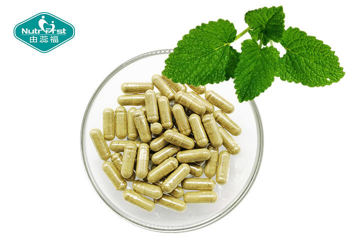 Stress Management Herbal Supplements / Lemon Balm Melissa Officinalis Leaves Extract