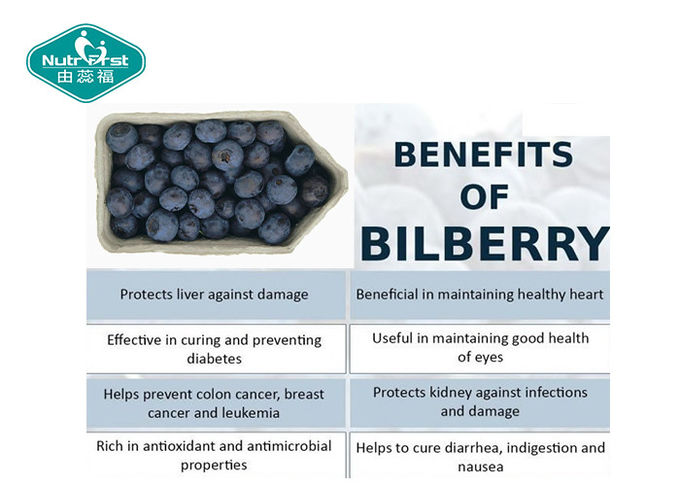 Bilberry Blueberry Bioactive Plant Extracts More Nutrition For Vision Eye Health