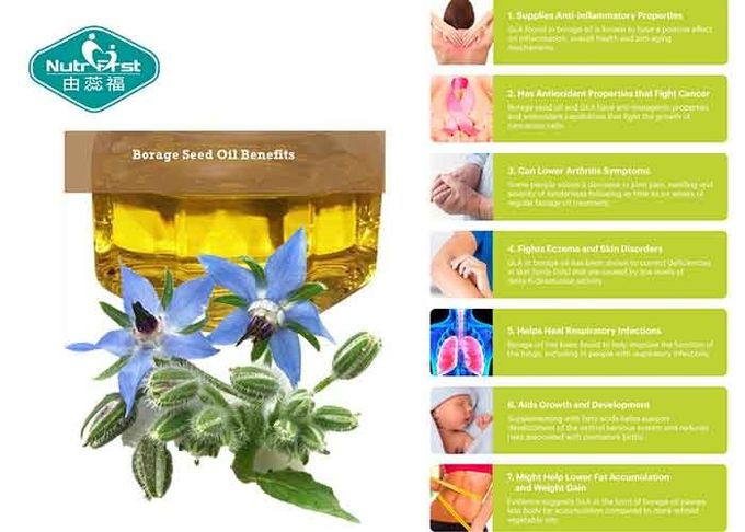 Borage Oil 1000mg Softgels Concentrated GLA For Women ' S Health , Lower Arthritis Symptoms